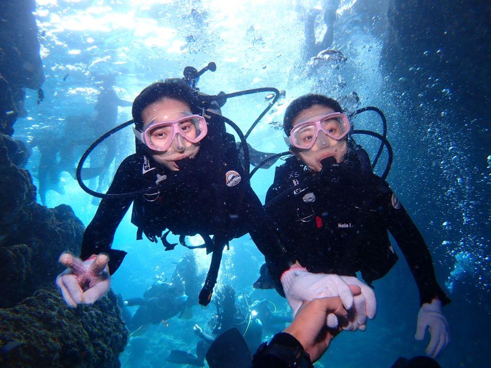 毎日5組限定!青の洞窟ボート体験ダイビング&パラセーリング