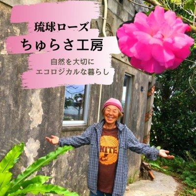 琉球ローズ化粧水
